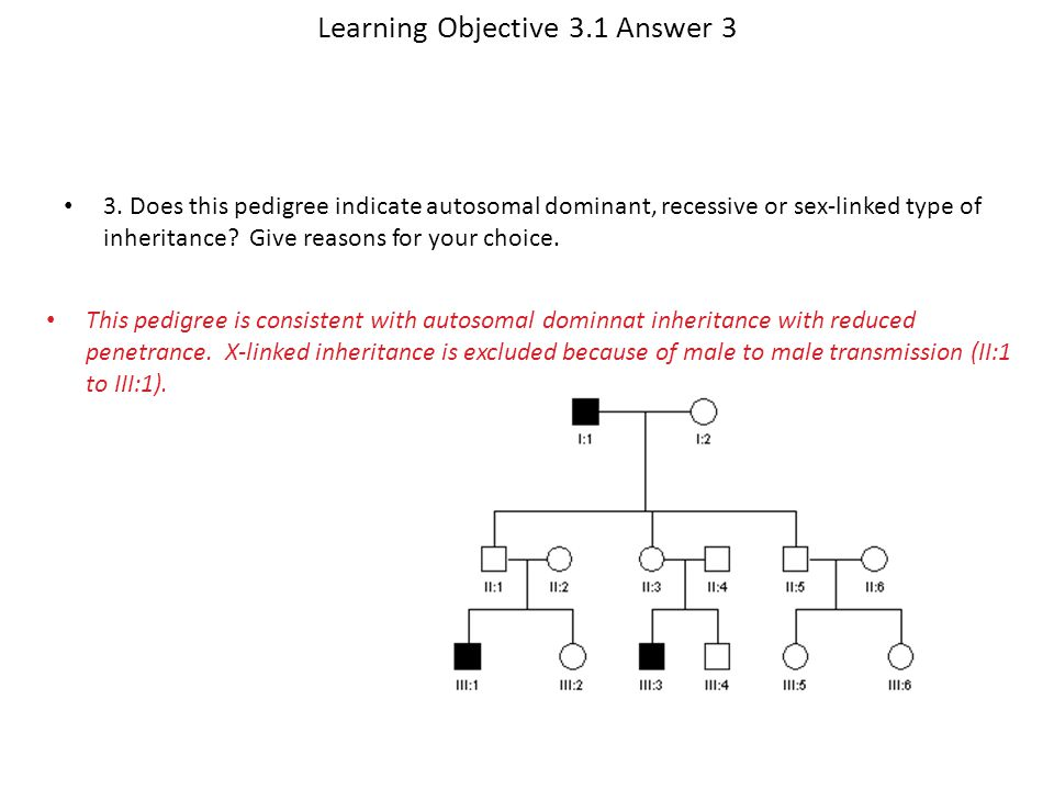 Learning Objective 3.1 Answer 3