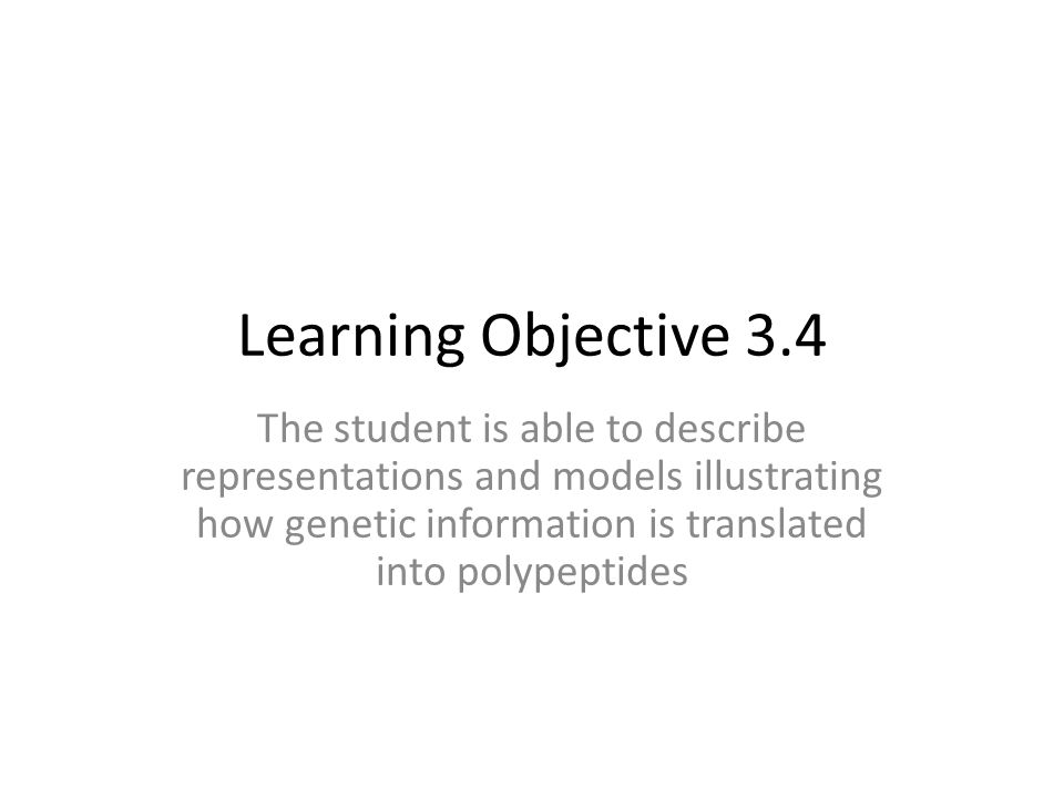 Learning Objective 3.4