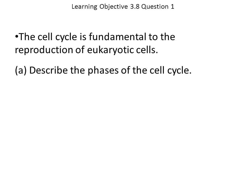 Learning Objective 3.8 Question 1