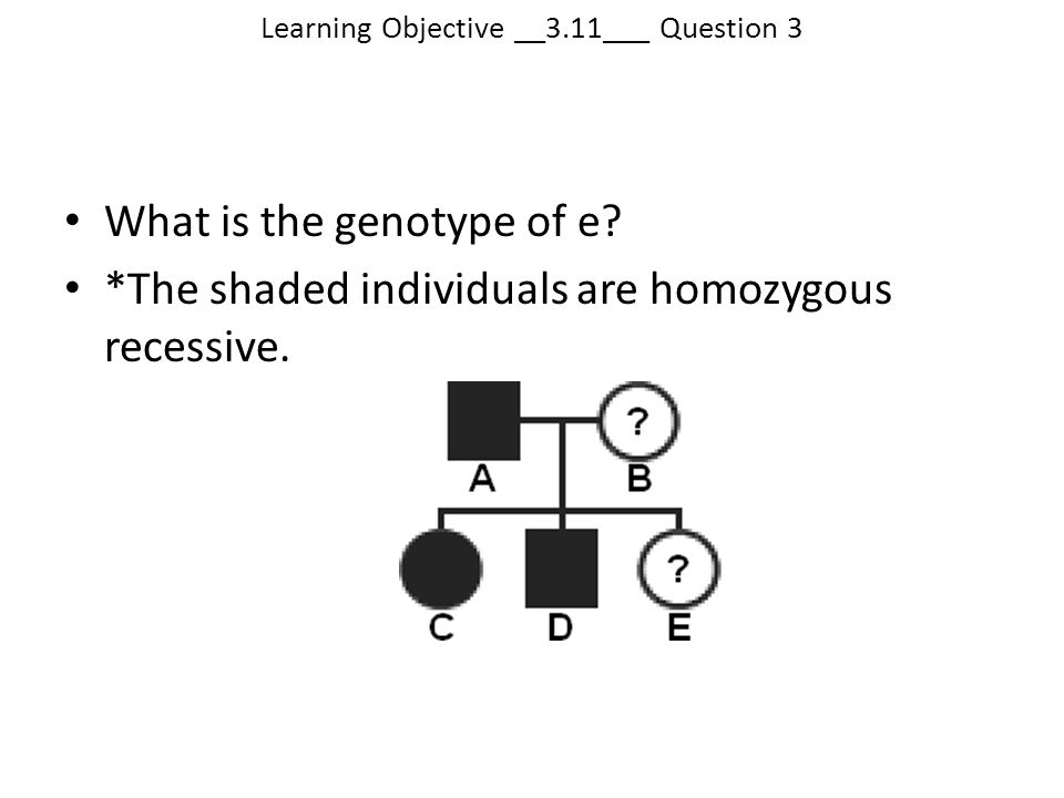 Learning Objective __3.11___ Question 3
