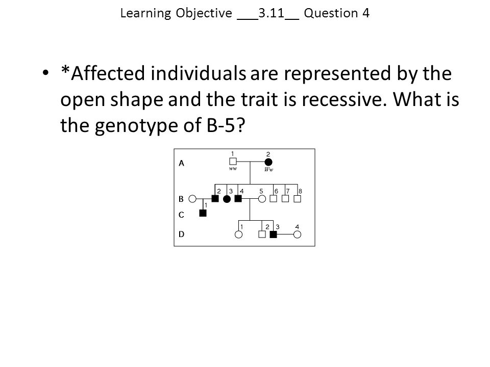 Learning Objective ___3.11__ Question 4