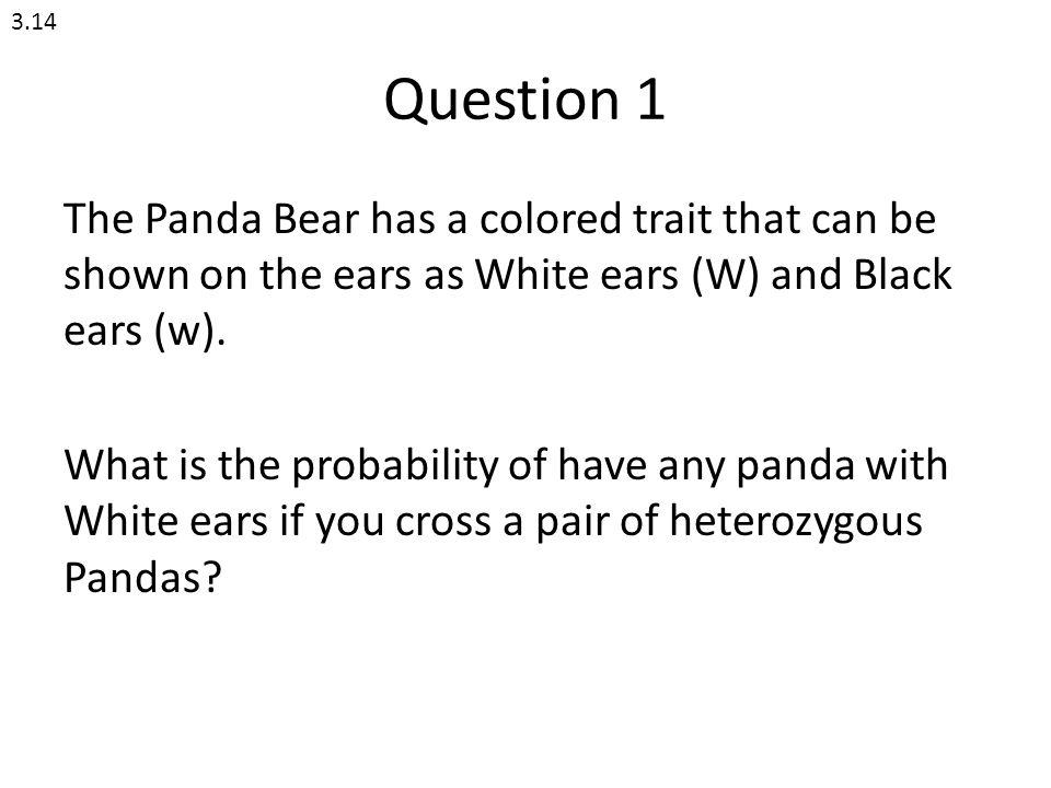 3.14 Question 1.
