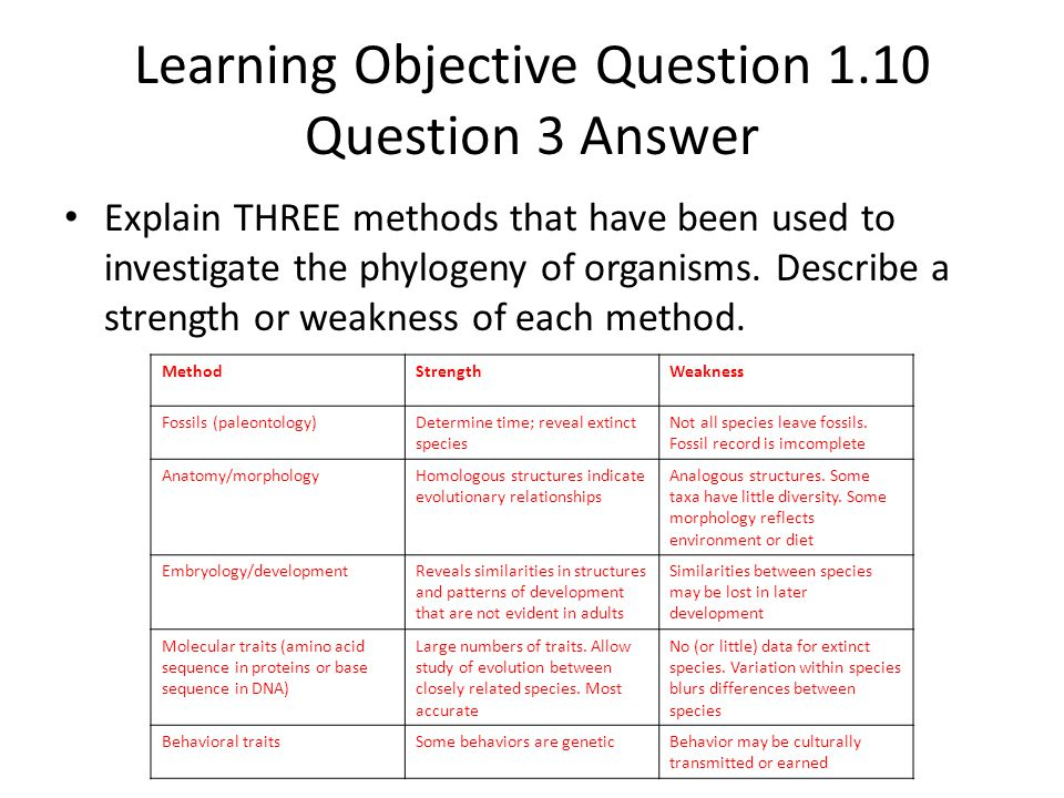 Learning Objective Question 1.10 Question 3 Answer