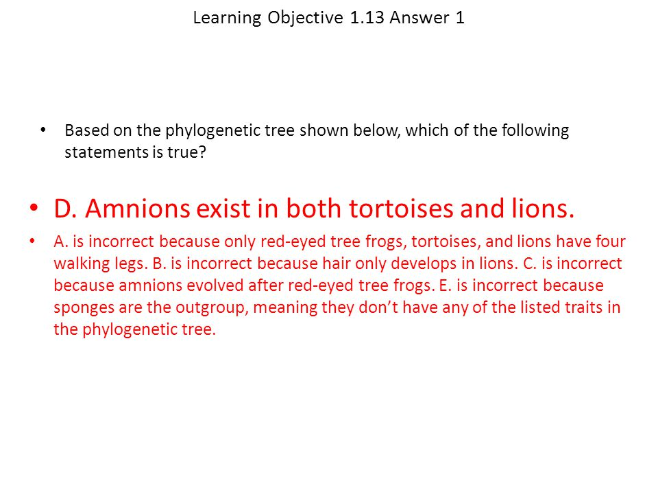 Learning Objective 1.13 Answer 1