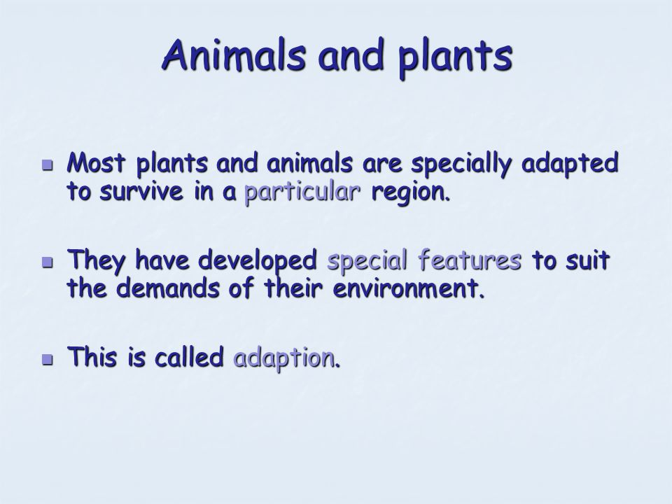 Animals and plants Most plants and animals are specially adapted to survive in a particular region.