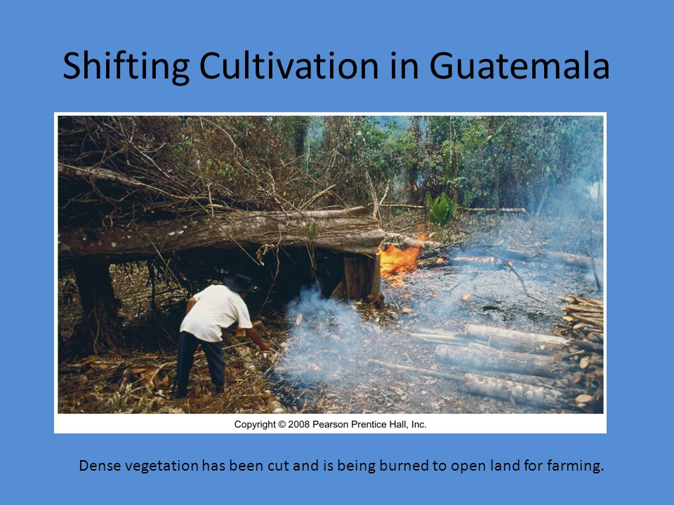 Shifting Cultivation in Guatemala