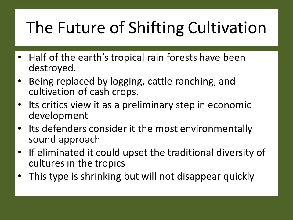 The Future of Shifting Cultivation