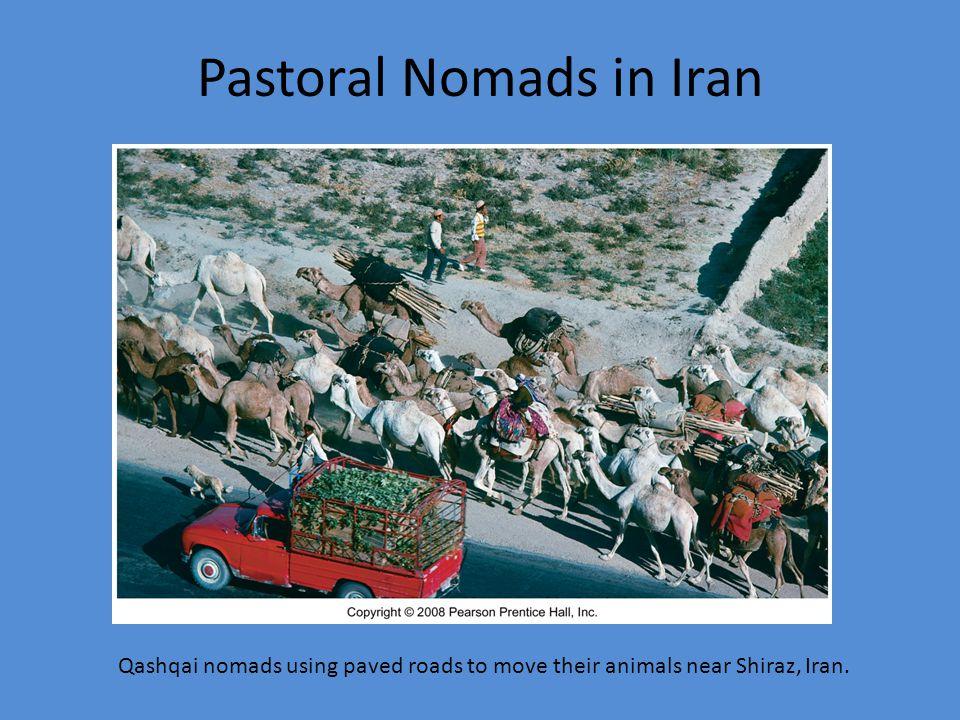 Pastoral Nomads in Iran