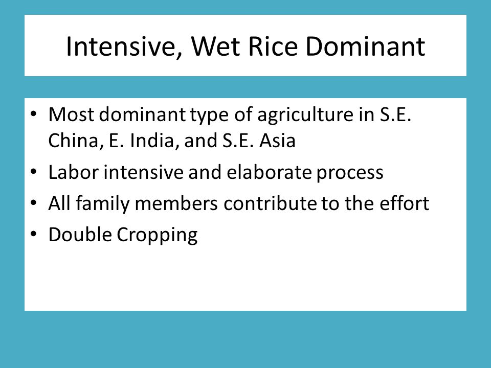 Intensive, Wet Rice Dominant