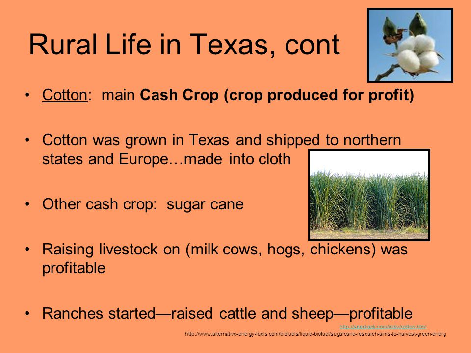 Rural Life in Texas, cont