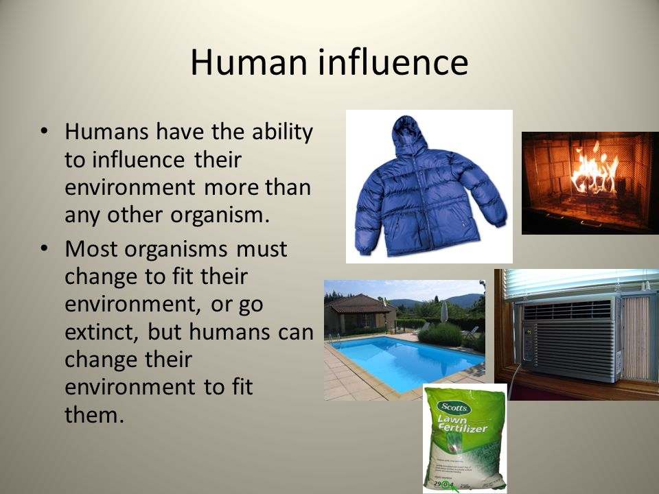 Human influence Humans have the ability to influence their environment more than any other organism.