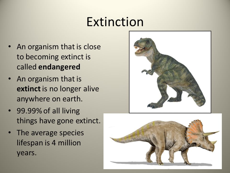 Extinction An organism that is close to becoming extinct is called endangered. An organism that is extinct is no longer alive anywhere on earth.