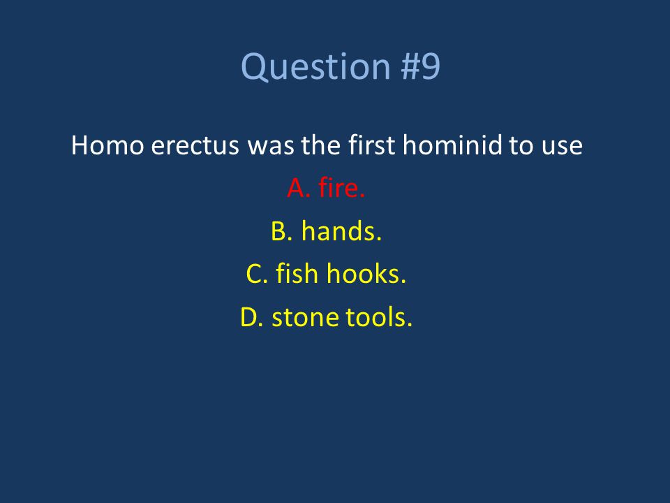 Homo erectus was the first hominid to use