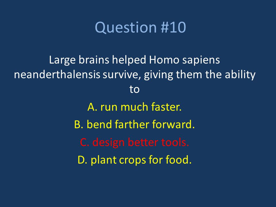 Question #10 Large brains helped Homo sapiens neanderthalensis survive, giving them the ability to.