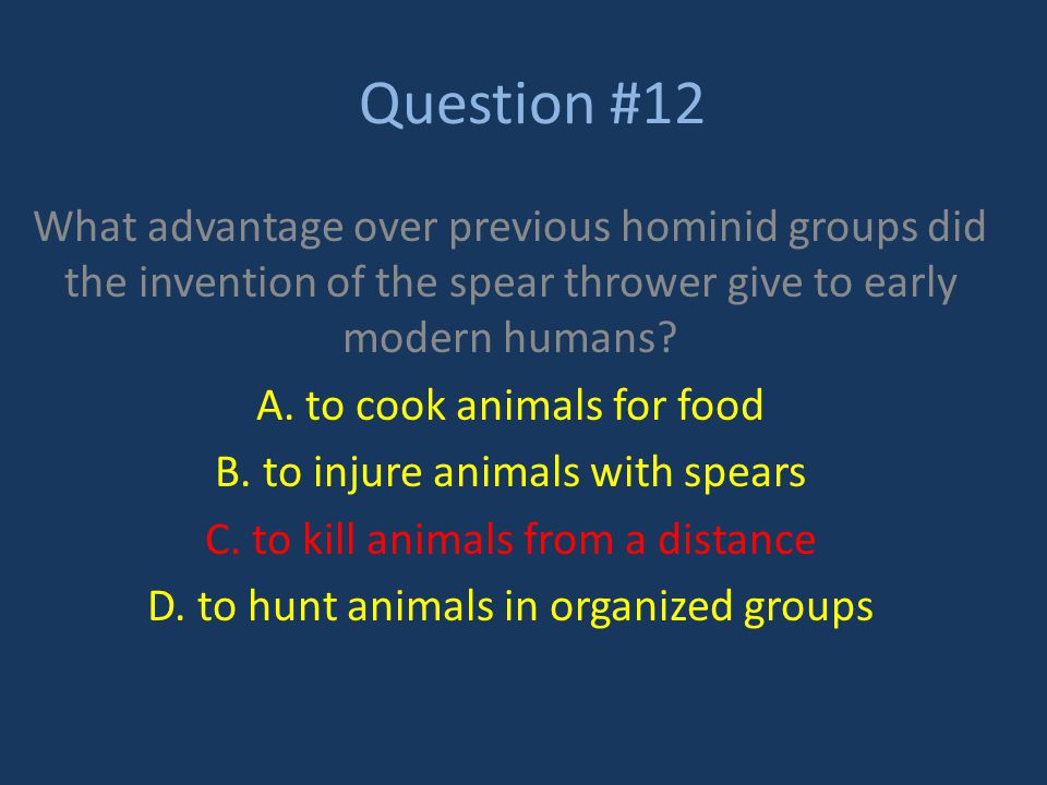 Question #12 What advantage over previous hominid groups did the invention of the spear thrower give to early modern humans