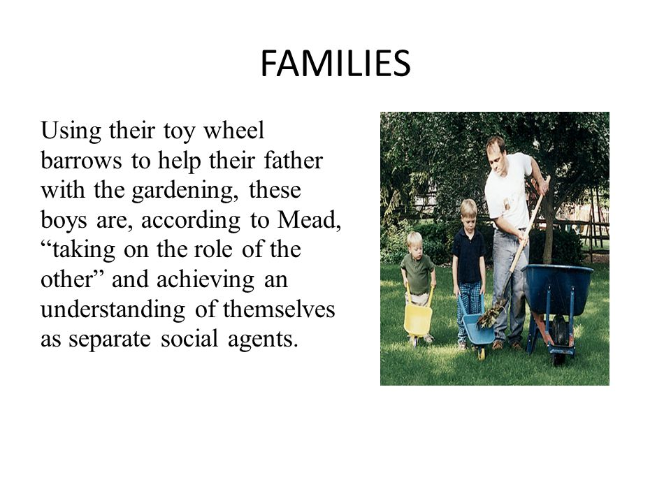 FAMILIES Using their toy wheel barrows to help their father