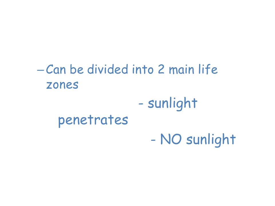Saltwater Oceans 1. Photic zone- sunlight penetrates