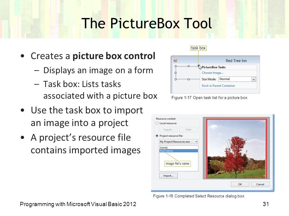 The PictureBox Tool Creates a picture box control
