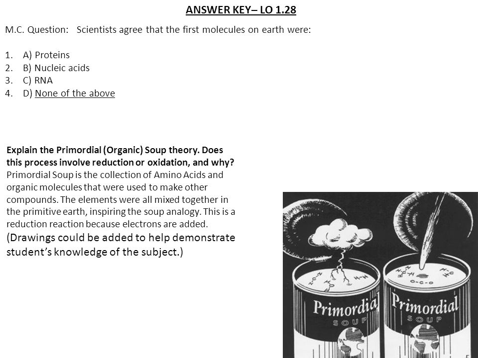 ANSWER KEY– LO 1.28 M.C. Question: Scientists agree that the first molecules on earth were: A) Proteins.