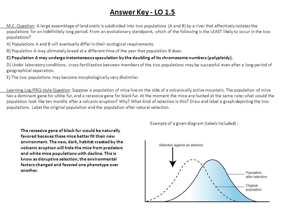 Answer Key - LO 1.5