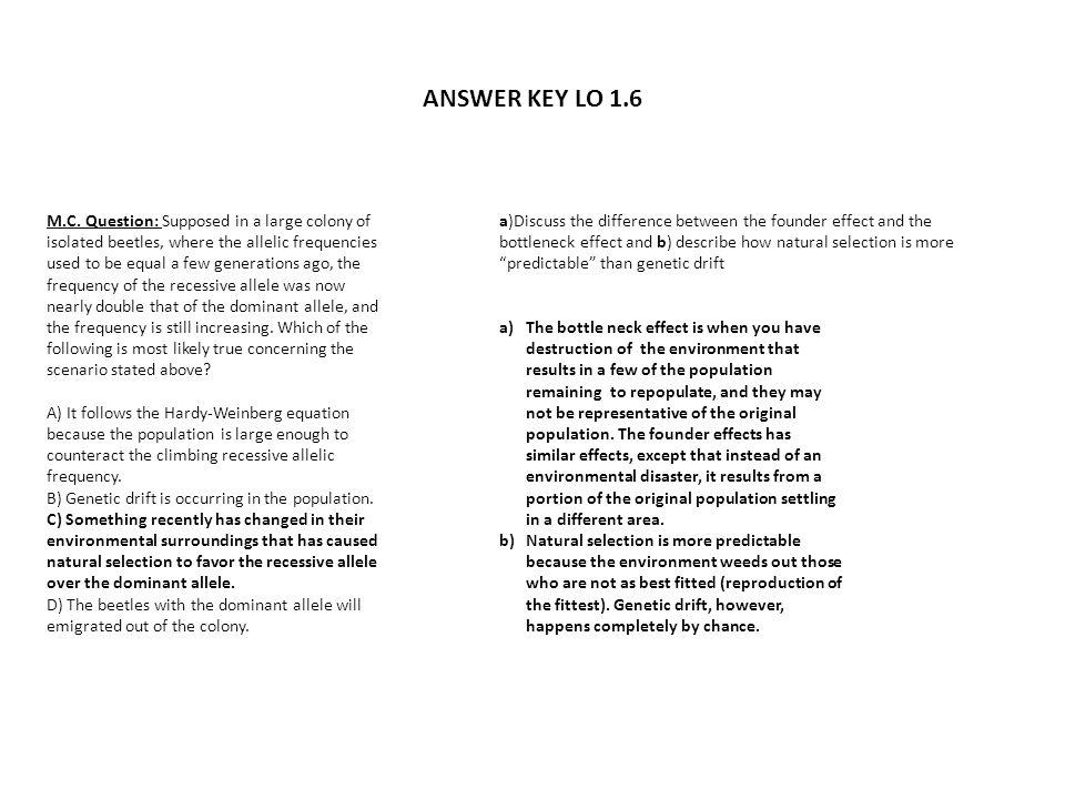 ANSWER KEY LO 1.6