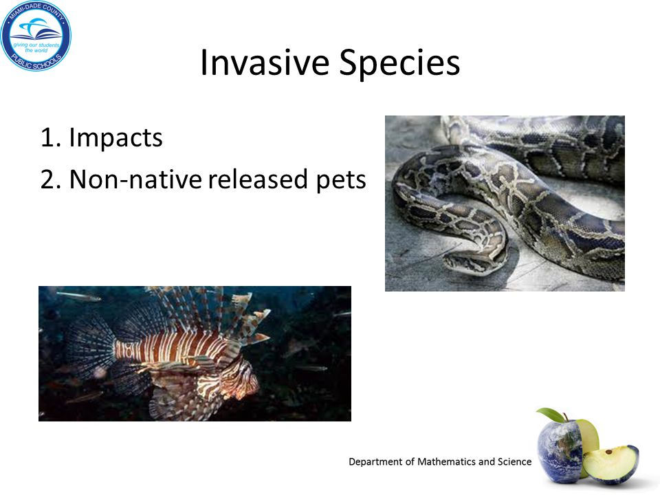 Invasive Species 1. Impacts 2. Non-native released pets