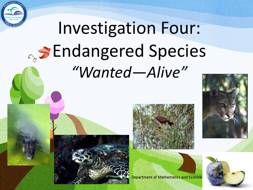 Investigation Four: Endangered Species Wanted—Alive
