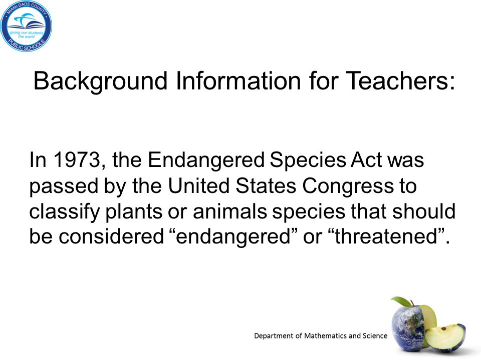 Background Information for Teachers: