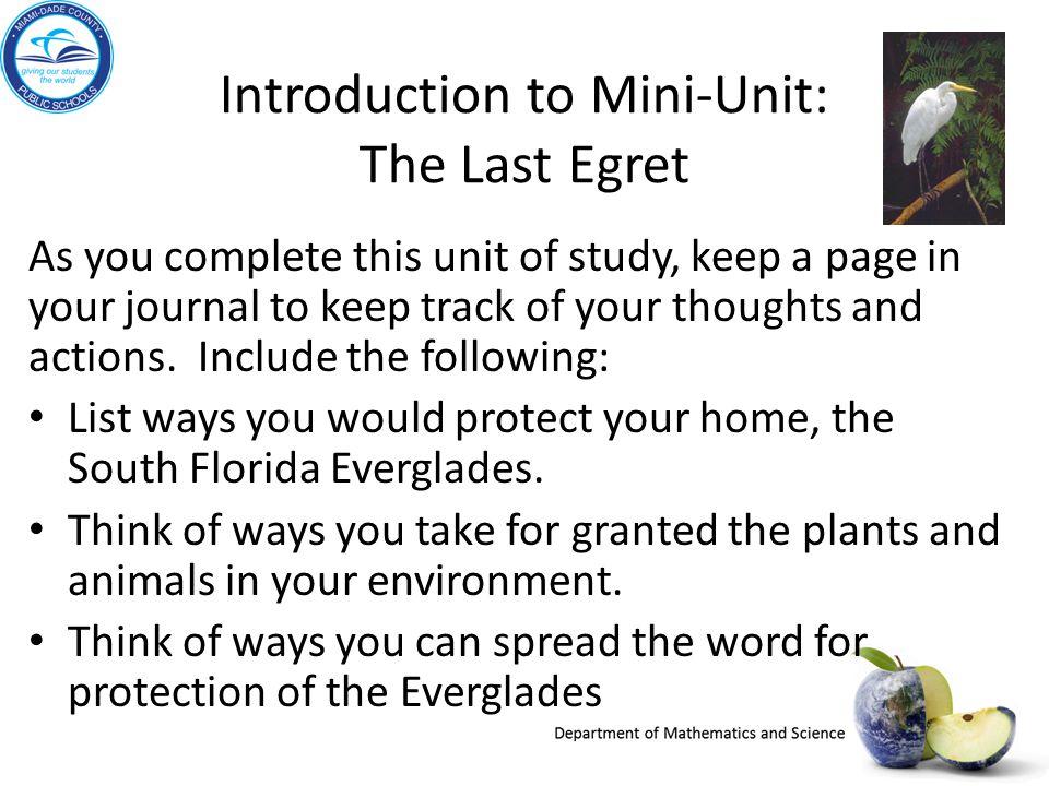 Introduction to Mini-Unit: The Last Egret