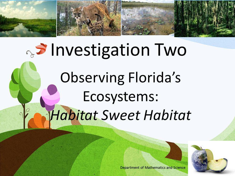 Observing Florida's Ecosystems: Habitat Sweet Habitat