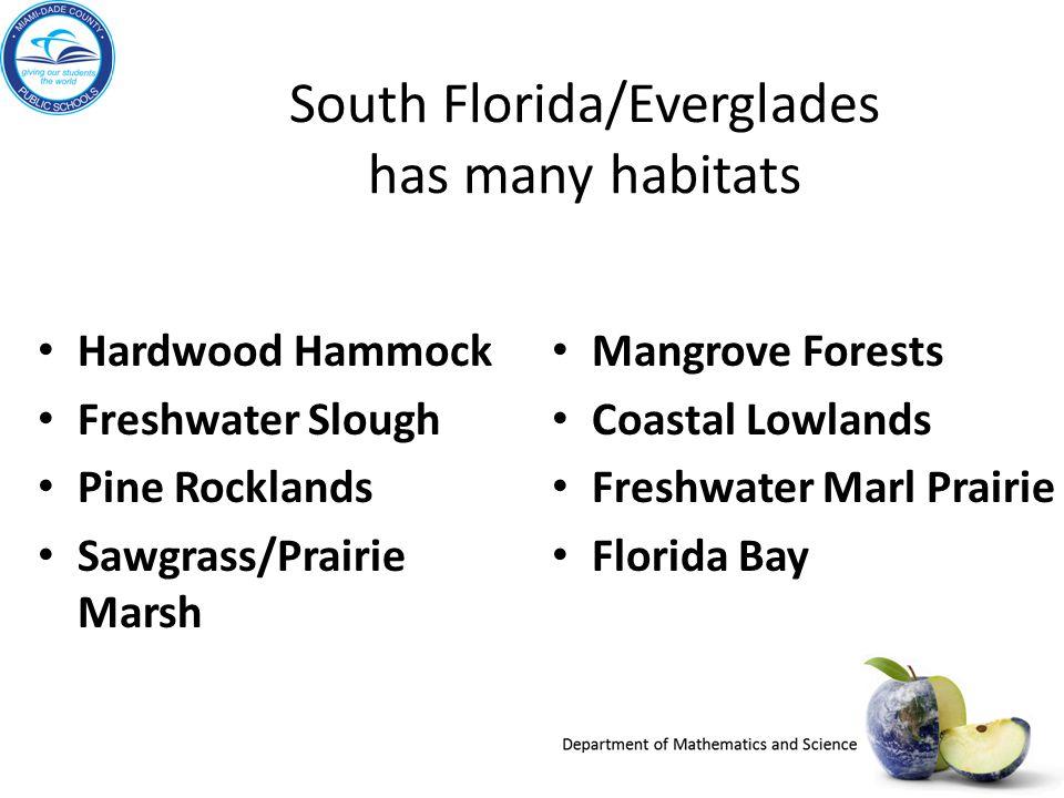 South Florida/Everglades has many habitats