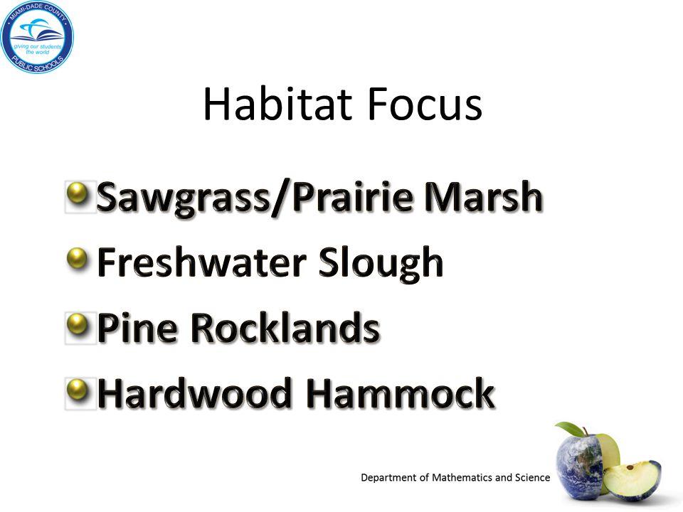 Habitat Focus Sawgrass/Prairie Marsh Freshwater Slough Pine Rocklands