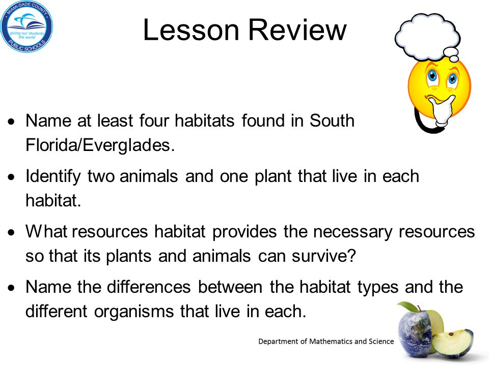 Lesson Review Name at least four habitats found in South Florida/Everglades. Identify two animals and one plant that live in each habitat.