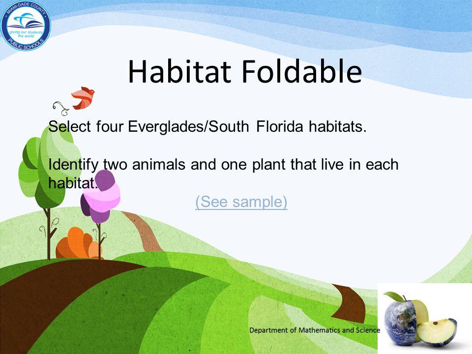 Habitat Foldable Select four Everglades/South Florida habitats.