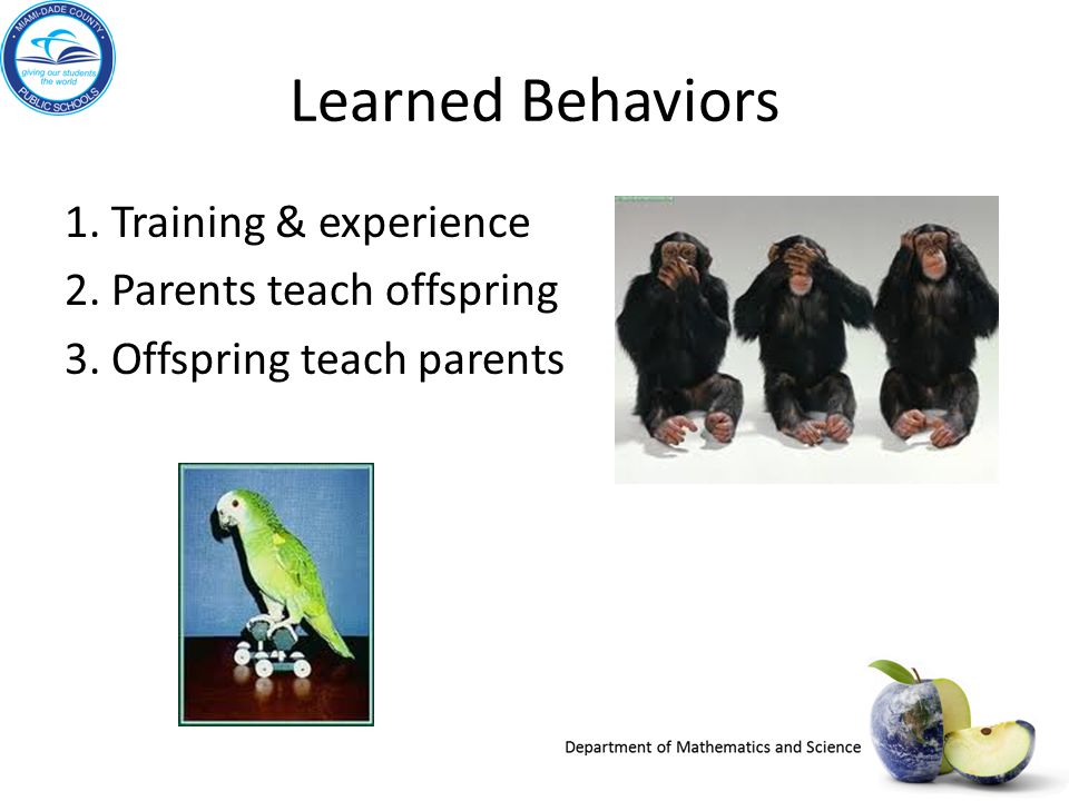 Learned Behaviors 1. Training & experience 2. Parents teach offspring 3. Offspring teach parents