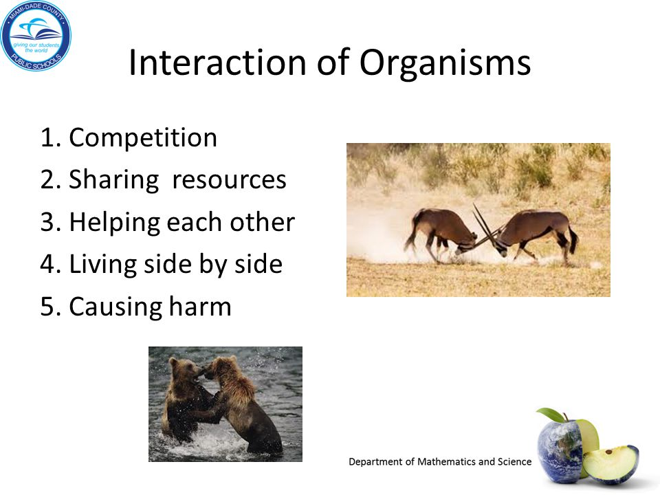 Interaction of Organisms