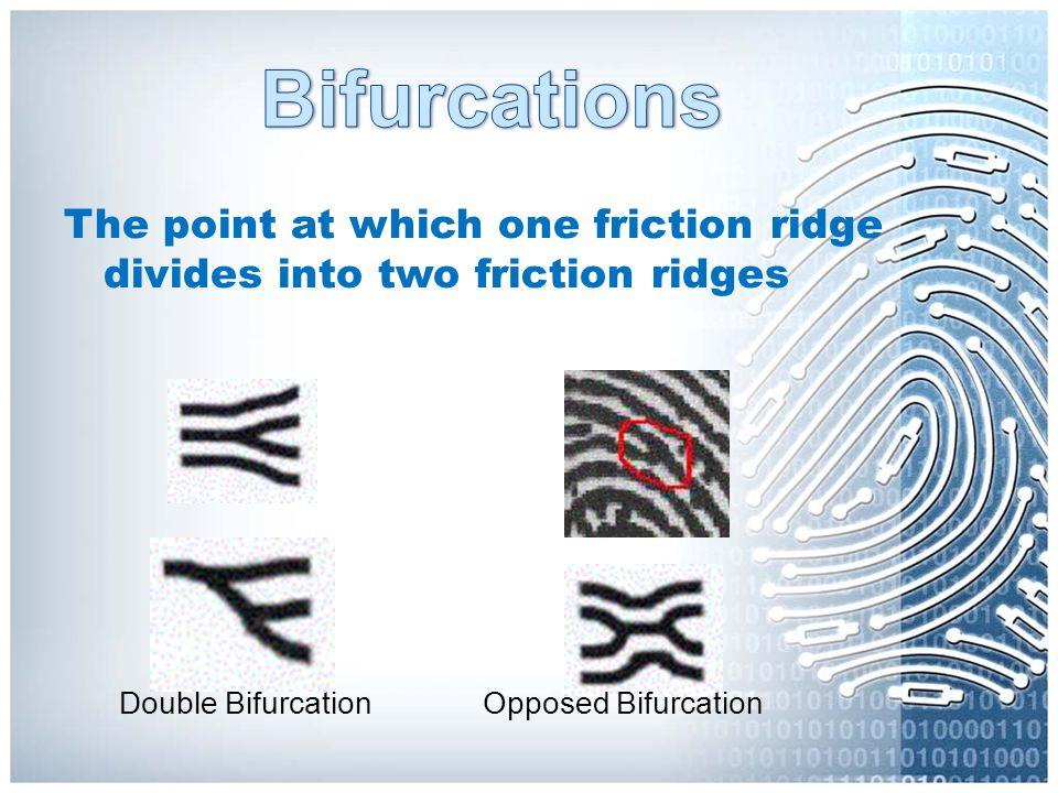 Double Bifurcation Opposed Bifurcation