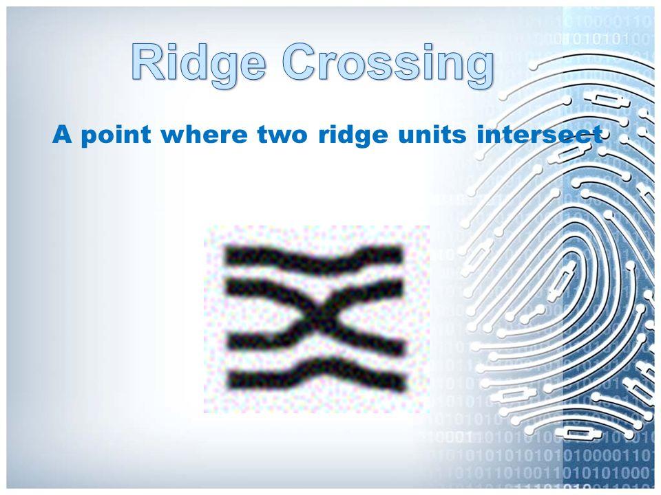Ridge Crossing A point where two ridge units intersect