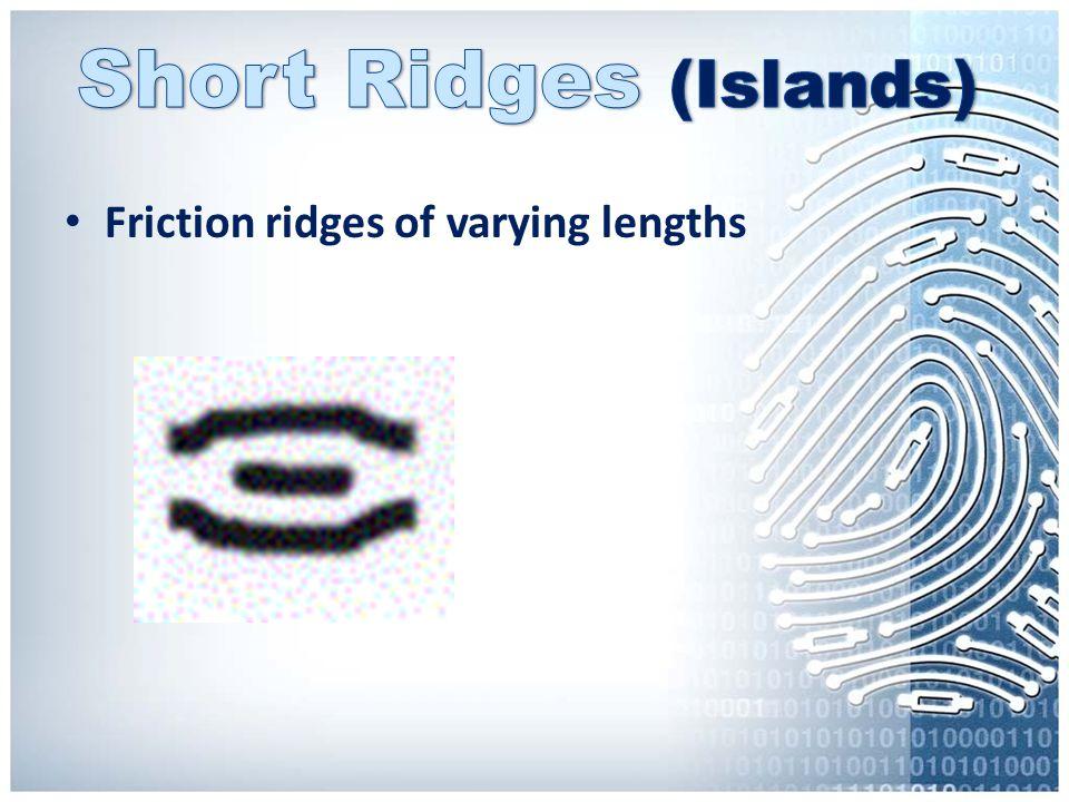 Short Ridges (Islands)