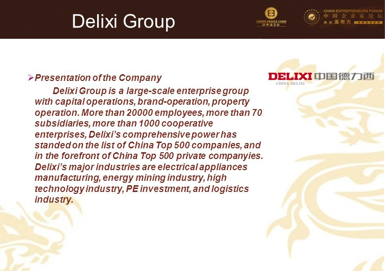 Delixi Group Presentation of the Company