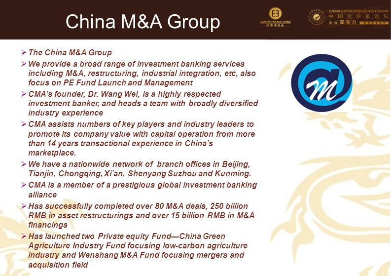 China M&A Group Company's LOGO The China M&A Group