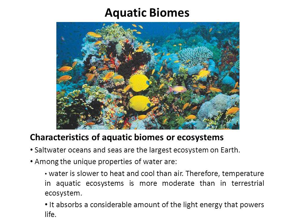 Aquatic Biomes Characteristics of aquatic biomes or ecosystems