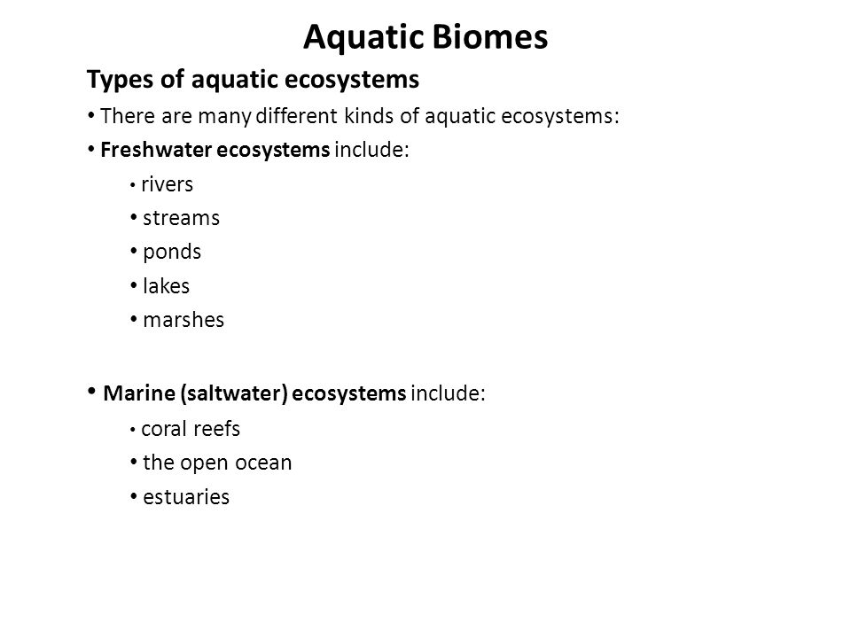Aquatic Biomes Types of aquatic ecosystems