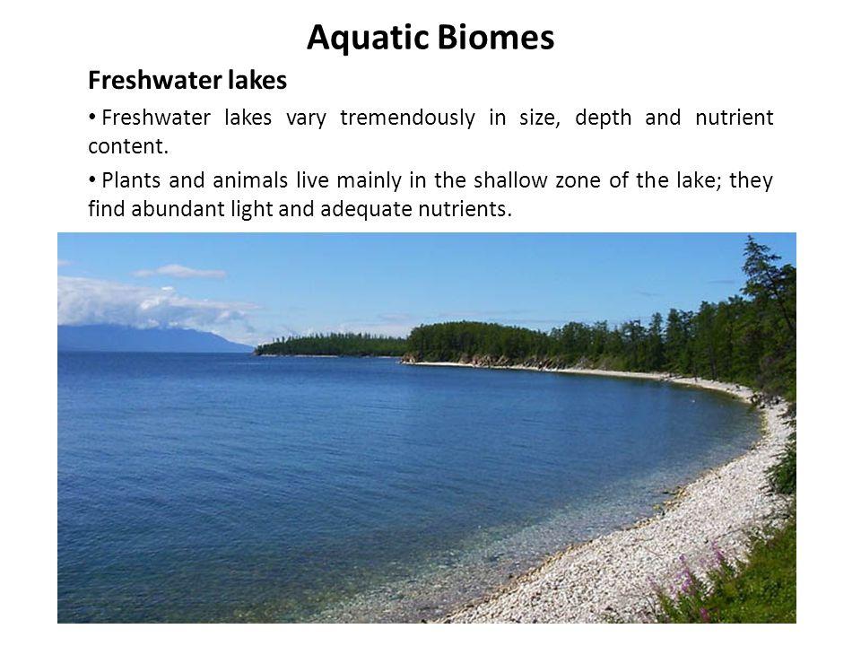 Aquatic Biomes Freshwater lakes