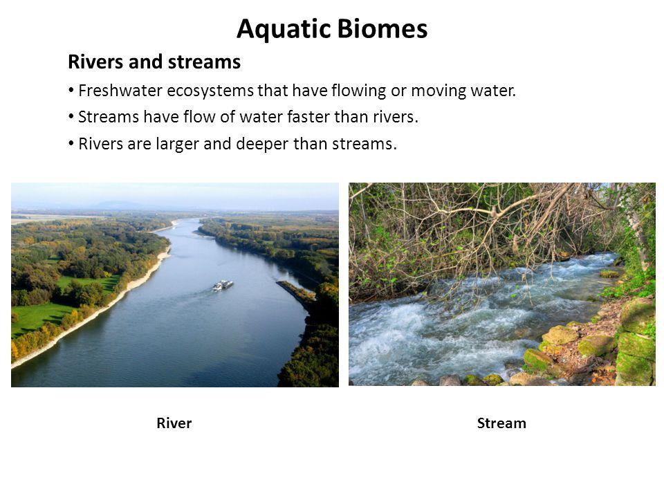 Aquatic Biomes Rivers and streams