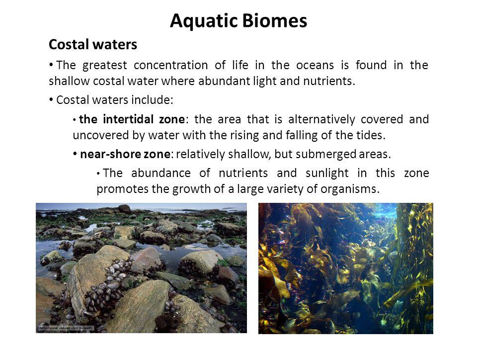 Aquatic Biomes Costal waters