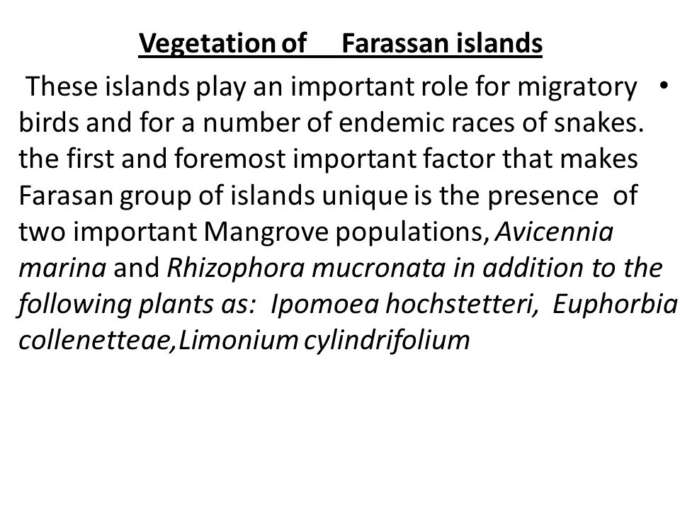 Vegetation of Farassan islands