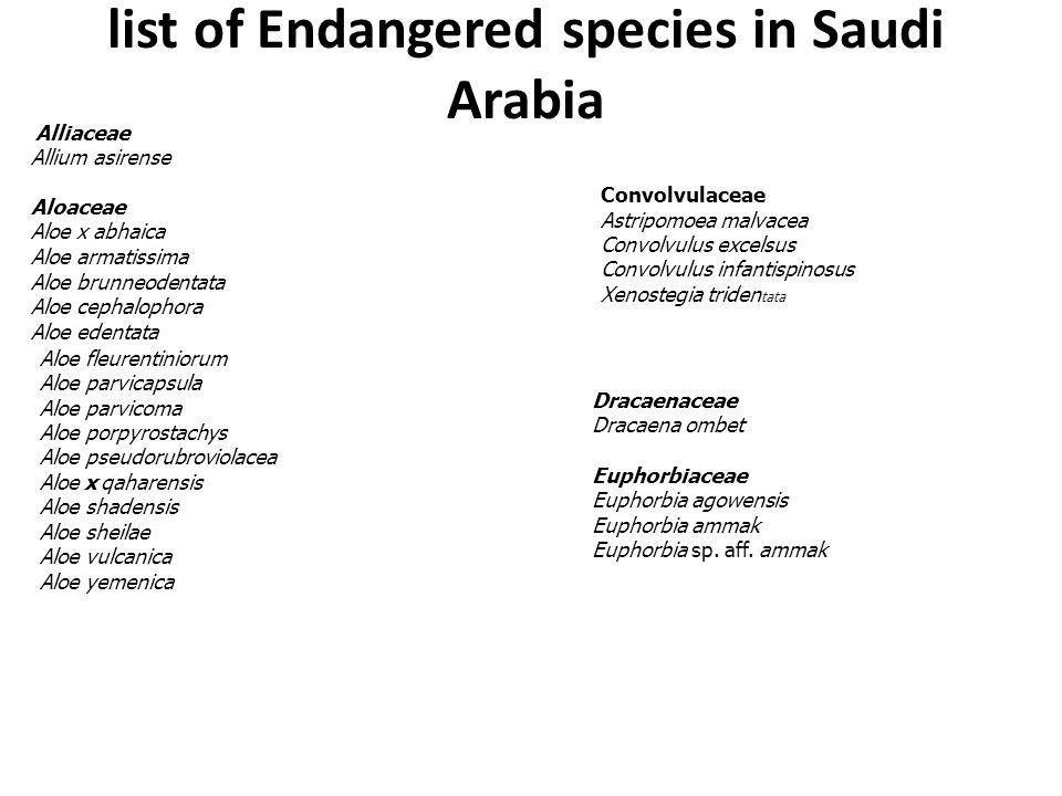list of Endangered species in Saudi Arabia