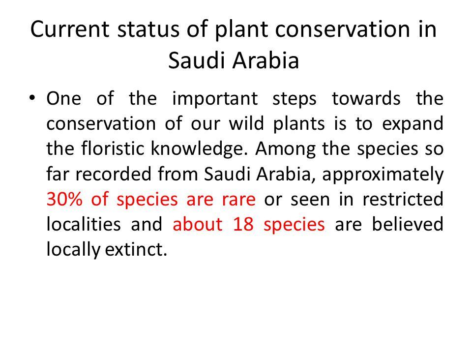 Current status of plant conservation in Saudi Arabia