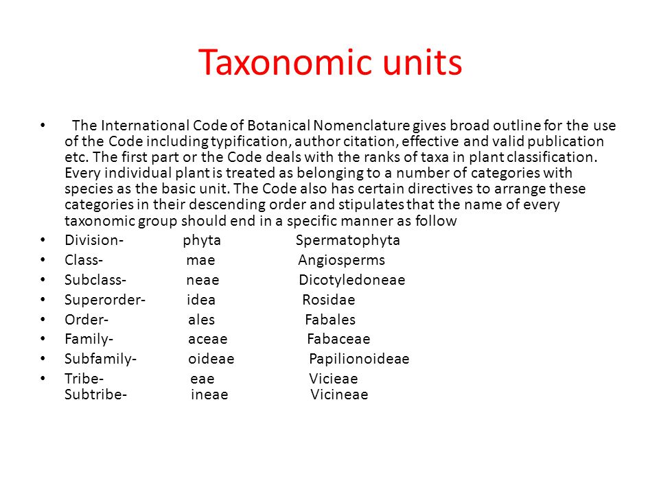 Taxonomic units